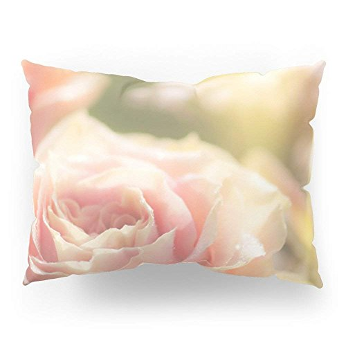 fengxutongxue Bunch of Pink Roses at Backlight- Rose Flowers Pillow Sham Standard (20