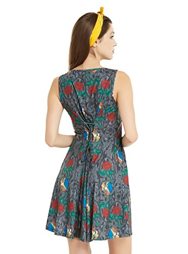 Disney Beauty and The Beast Stained Glass Roses Dress Grey