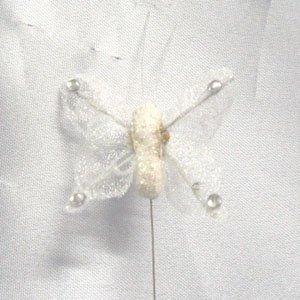 Medium Glitter Farfalle. Confezione da 12