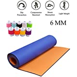 Easypro Dual Layer Fitness Non Slip Yoga mat 6mm Thick (Orange-Blue) with Cable Protector