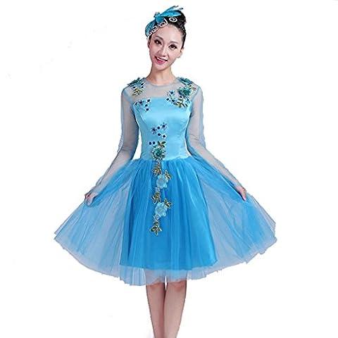 Wgwioo moderne klassische tanzkleider stickerei print diamond hochzeit prinzessin eröffnung kostüme erwachsene frauen chor bühne national performance lange rock , blue , s