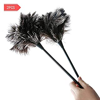 Dust Brush - MEIWO 2 Pack Mini Ostrich Feather Duster Perfect for Small Computer Accessories, Cars, Furniture