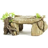 Cueva Oculta con Tope Adorno de Reptil y pez, decoración para Ocultar Rocas