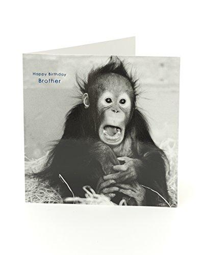 Funny Monkey Brother Geburtstagskarte