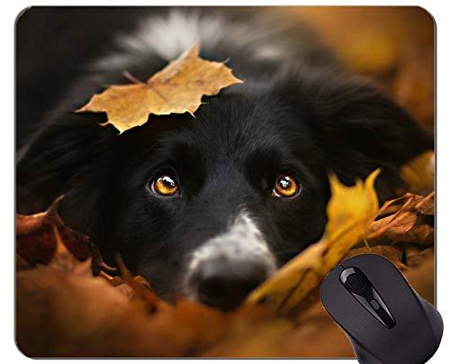 Mauspads, Gaming-Mauspad, Leaf Dog Border Collie - Genähte Kanten Leaf Border