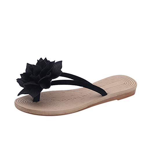 WWricotta Women Fashion Summer Roma Flower Flat Anti-Slip Slipper Beach Casual Shoes(Schwarz,38) Womens Jacket Roma
