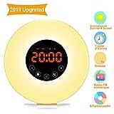 Lichtwecker Swonuk Wake up Light Tageslichtwecker mit FM Radio Digitaluhr
