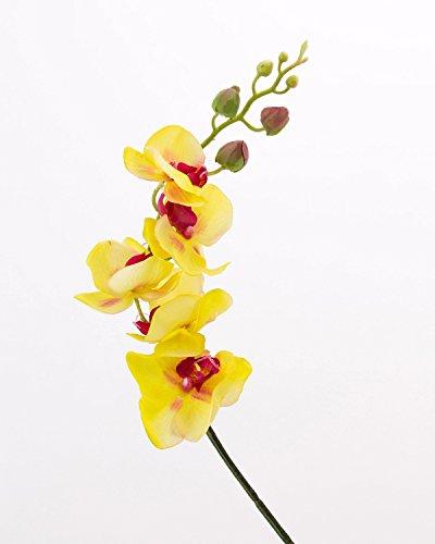 artplants - Künstlicher Phalaenopsis Zweig, real Touch, grün-Burgunderrot, 90 cm - Deko Blüten Zweig/Kunst Orchideen Blume