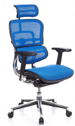 hjh OFFICE 652150 Luxus Chefsessel ERGOHUMAN Netzstoff Blau hochwertiger Bürodrehstuhl mit Vollausstattung