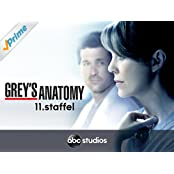 Grey's Anatomy - Staffel 11 [dt./OV]