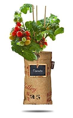 Baza - Seeds & Mini Garden - Pflanze: Tomate - Fertiger Zuchtbeutel mit Erde & Samen - Pflanzbeutel zum Hängen von Klocke Dekorationsbedarf auf Du und dein Garten