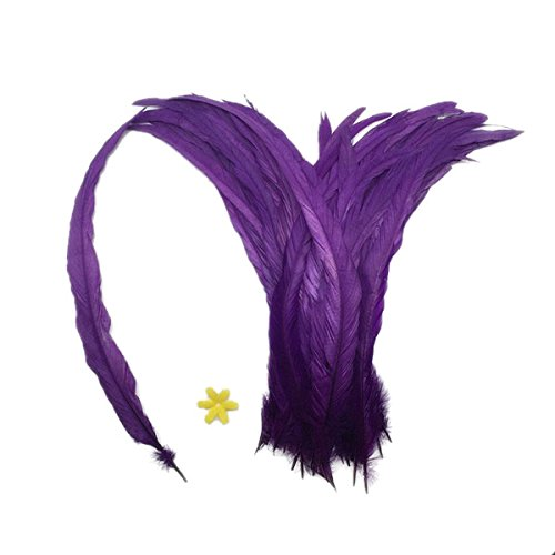 eder Deko Hahnenfedern Naturfedern Deko-Federn für Bekleidung Hüte Kostüm - Lila (Lila Kostüm Idee)
