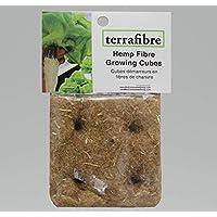 Terrafibre Cubos de Cultivo Hechos de Cáñamo (4 Cubos de 5cm)