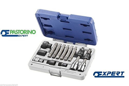 Kit pour démonter et monter les poulies des alternateurs PaSTORINO expert e201901