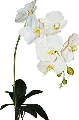 Großer Orchideenzweig mit Blättern Künstlich - Weiße Blüten - Hochwertig & Naturgetreu (Qualitätspflanze) - Phalaenopsis/Orchidee - Länge: 83cm - Einzelblume/Seidenblume für Bodenvase