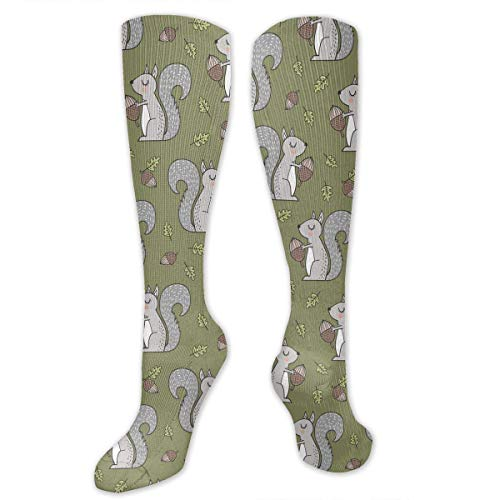 Gped Calcetines Largos Forest Squirrel Squirrels with