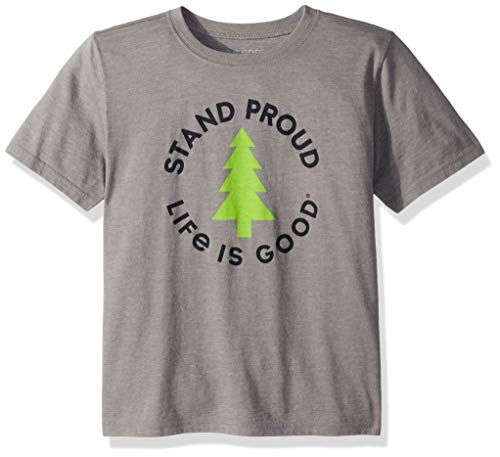 Life Is Good Boys Cool Tee Stand Tall Pine, Slate Gray, XX-Large - Life Is Good Boys T-shirt