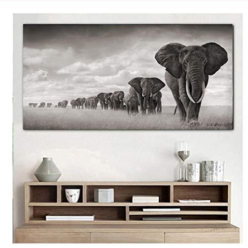 Xwwnzdq Elefantes Animales Que pintan Cuadros Pared