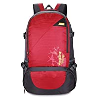 Lszdp-negozio Travel Daypack Leisure Backpack Sports Shoulder Backpack Perfect for professional photographers and hobbyis (Color : B, Size : 37x22x50cm)