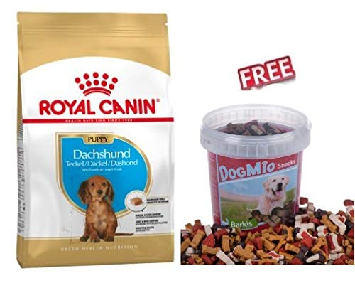 Royal Canin Dachshund Puppy 3 x 1.5kg Dog Food for Dachshund up to 10 Months with Special Recipe Supports Balance Growth & Healthy Immune System FREE DogMio Barkis