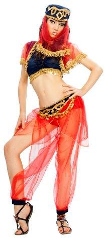 Odalisque Kostüm - Damen Kostüm für Erwachsene, Tänzerin, orientalisch Odalisque 1001 Nacht auch für unterwegs (Größe M-L)