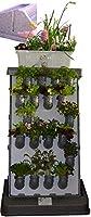 i3-Benjamin Pro-Kit Indoor vertikaler Garten