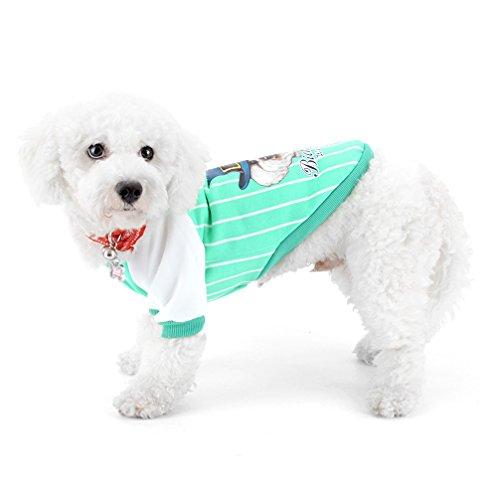 ranphy Baseball Hund Jacke für Hund Katze Haustier Swearshirt Yorkie Jacke Herbst Hund Bekleidung Chihuahua Kleidung (Jean Grünen Kostüm Grey)