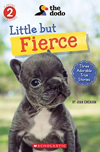 Little But Fierce (The Dodo: Reader #1) (Scholastic Readers) (English Edition)