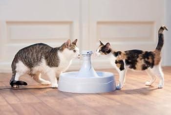 PetSafe - Fontaine à eau pour Animaux 360° Drinkwell en Plastique Sans BPA - Pour Chats et Chiens, Capacité 3.8L, 5 Jets d'eau Cascade