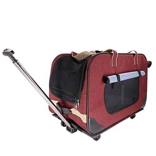 Syun Pet out Trolley Case Dog Carrito portátil Cat
