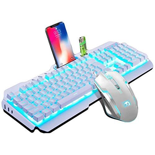 OUKB Mechanische Tastenkappe Kabelgebundene Tastatur Maus Set Headset E-Sportspiel Internetcafés Startseite Bunte Hintergrundbeleuchtung Metall (Color : Silver White Mouse Keyboard Set)