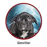 RelaxoPet Entspannungsgerät | Hund und Katze; Version 2.0 | Beruhigung durch Klangwellen | Ideal bei Gewitter, Feuerwerk oder auf Reisen | Hörbar und unhörbar | 5V, kabellos - 5