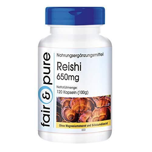 120 cápsulas vegetarianas de reishi 650, Ganoderma lucidum, Sustancia pura y sin aditivos