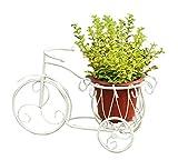 Jren-zk Dreirad-Blumen-Stand, Weißes Eisen-Feines Muster-Desktop-Kleines Blumen-Topf-Wohnzimmer/Schlafzimmer/Studie/Esszimmer 50 * 28.5CM (Farbe : Weiß)