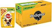 Pedigree Vital Protection Adult Wet Dog Food, Lamb in Jelly, 12 Pouches (12 x 100g)