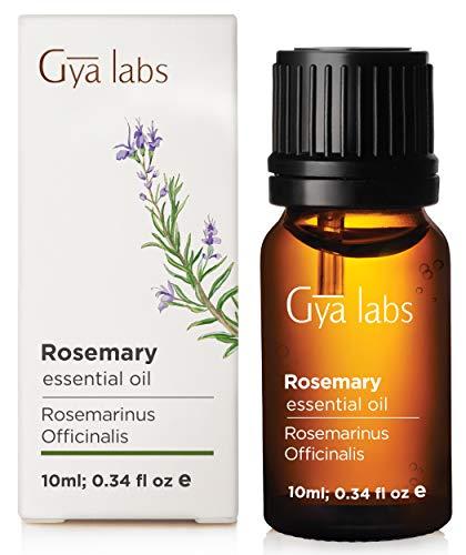 Rosmarin (Spanien) - 100% Pure, unverdünnt, Bio, Natur & Therapeutische Grade ätherisches Öl für Aromatherapie Diffusor, Gesundheit Haut Raum und Entspannung 10 ml - Gya Labs -