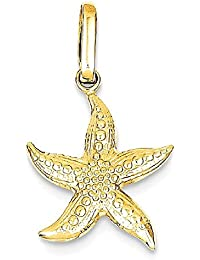 ICE CARATS 14k Yellow Gold Textured Starfish Pendant Charm Necklace Sea Shore Shell Fine Jewelry Gift Set For Women Heart