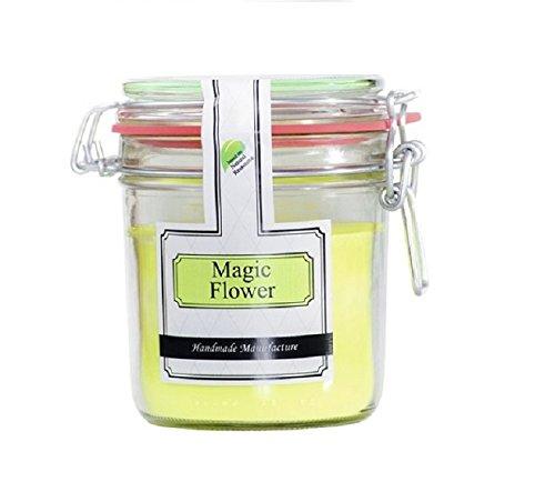 Parfüme Boutique 1106372 MF Vintage Vintage Verre – L – Magic Flower Bougie parfumée dans Verre, Vert Clair, 13 x 13 x 12 cm