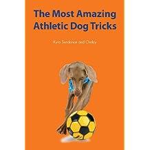 The Most Amazing Athletic Dog Tricks