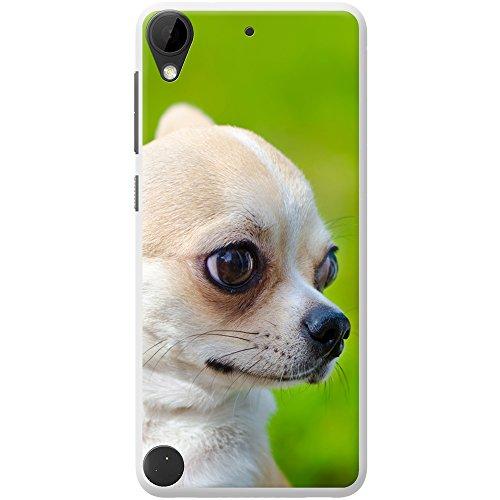 chihuahua-mexicana-taco-bell-perro-duro-caso-para-telefonos-moviles-plastico-portrait-of-chihuahua-h