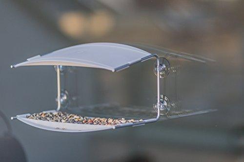 Radius 395 C Vogelhaus Piep Show Transparent - 9