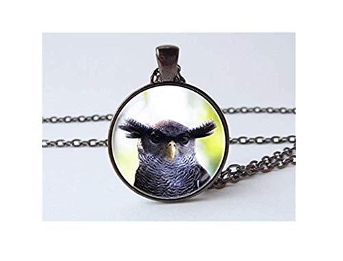 Collar de búho de águila, regalo ornitólogo, colgante de búho, joyería de búho, collar de pájaros