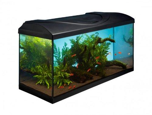 Komplett Aquarium Set 80x35x40 cm 112 L D 80 35 40