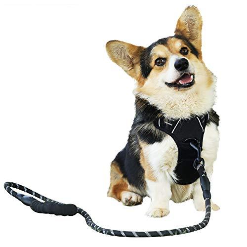 Raining Pet Hundegeschirr Hunde Geschirr für Große Hunde Anti Zug Geschirr No Pull Sicherheitsgeschirr Kleine Mittlere Hunde Brustgeschirr Schwarz XL