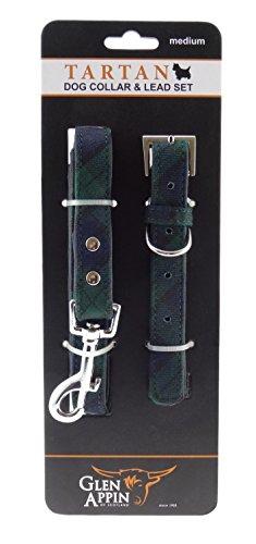 Glen Appin Lovely Blackwatch Tartan Hundeleine und Halsband Set-in 3Größen erhältlich Medium (Hundeleine Und-kragen-kariertes)
