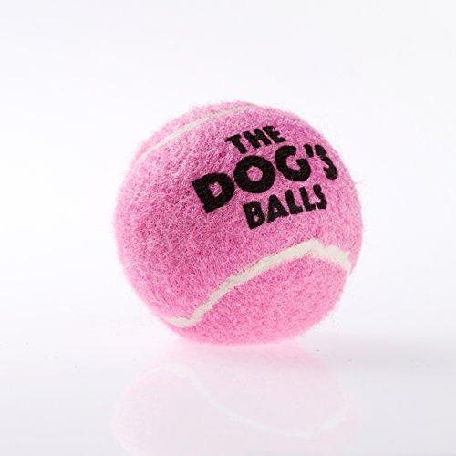 the-little-dogs-balls-6-petit-balles-de-tennis-pour-chien-balles-de-tennis-concues-par-les-humains-t
