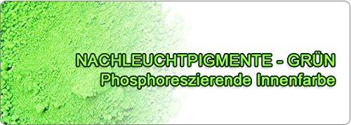 8980eur-kg-leuchtpigmete-nachleucht-pigments-vert-500-g-type-wolf-fosses-septiques-oeuvres-ou-we-w12