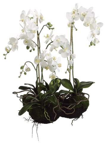 33-artificial-phalaenopsis-white-orchid-flowering-plant-by-allstate