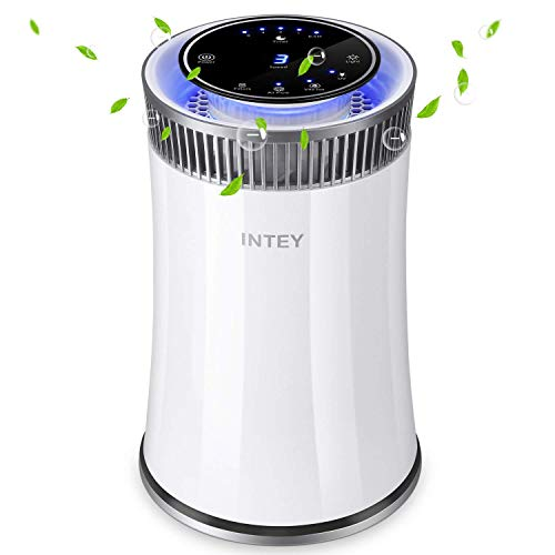 INTEY 5 Speed Air purifier with ...