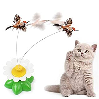 AUOKER Motorized Cat Toys, Interactive Cat Teaser Toy for Cat Kitty Entertaining, Exercise, Chasing & Keep Happy - Cat Agility Toys Auto Motion Teasing Feather or Butterfly, Random Color